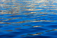 Blue water ripples Royalty Free Stock Photo