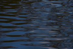 Blue water ripples surface texture Royalty Free Stock Images