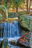 Blue Water Spring. And red leaves in autumnal forest stock image
