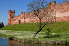 Blue water, white daisies and ancient walls Stock Photography