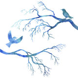 Blue watercolor birds at tree silhouettes Stock Image