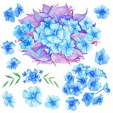 Blue Watercolor Boho Flowers Set Royalty Free Stock Photos