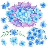 Blue Watercolor Boho Flowers Set Royalty Free Stock Photos