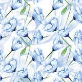 Blue watercolor poppy pattern Stock Image