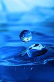 Blue waterdrop. With reflection of flowers Stock Photos