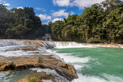 The blue waterfall in Chiapas Stock Images