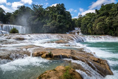The blue waterfall in Chiapas, Mexico Stock Images
