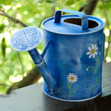 Blue watering can. With a painted daisies Royalty Free Stock Photo