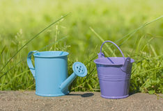 Blue watering can, bucket purple Stock Photo