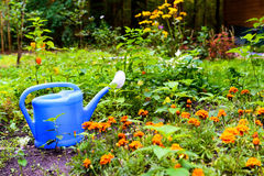 Blue watering can Royalty Free Stock Images