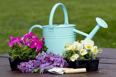 Blue Watering Can on Table Outdoors Stock Photography