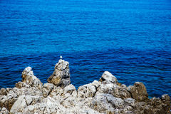 Blue waters and rocks in Cefalu Stock Photography