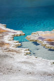 Blue waters in Yellowstone's geysers Stock Images