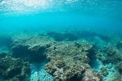 Blue Wave. Blue ocean wave breaking in Maui, Hawaii royalty free stock image
