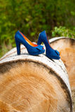 Blue wedding shoes bride Stock Photo