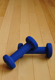 Blue Weights on Hardwood Floor of Fitness Center Stock Photo