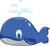 Blue Whale Royalty Free Stock Photos