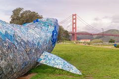 Blue Whale and Golden Bridge. Blue Whale and The Bridge. Landscape shot from Crissy Field, San Francisco, California stock image