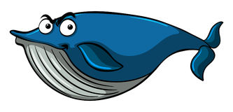 Blue whale with serious face. Illustration Stock Photos