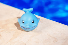 Blue whale toy near the pool Stock Image
