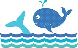 Blue Whales Stock Photography