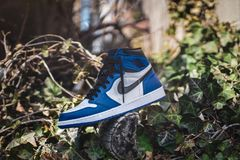 Blue and White Air Jordan 1 on Gray Wood Log at Daytime Stock Images