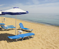 Blue-white beach umbrellas and chaise lounges Royalty Free Stock Image