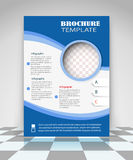 Blue and white business flyer design Stock Image