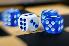 Blue and white dices on chessboard with blur effect stock photography