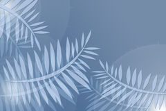 Blue and White Ferns. Blue and white fern branches on pale blue background Stock Illustration
