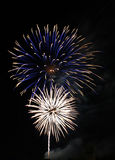 Blue and White Fireworks Stock Photography