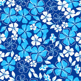 Blue and white floral seamless pattern Royalty Free Stock Images