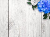 Blue and White Flower Border Background Stock Image