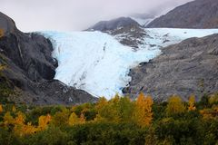 BLUE AND WHITE GLACIER FALL TREES AND FOG. Blue and white glacier with fall coloured trees in foreground and fog in the background. Taken in Alaska Stock Images