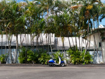 Blue white motor scooter with palm trees Royalty Free Stock Photography