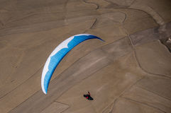 Blue and white paraglider pilot flying above the fields Royalty Free Stock Image