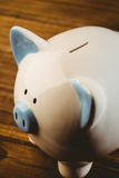 Blue and white piggy bank Stock Photography