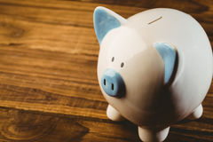 Blue and white piggy bank Stock Images