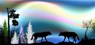 Northern landscape with aurora and two wolves and silhouettes of trees. Royalty Free Stock Photos