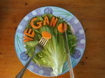 A blue and white plate of carrot spelling vegan royalty free stock photos