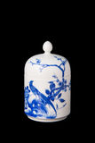 Blue and white porcelain tea caddy studio shot closeup Royalty Free Stock Images