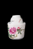 Blue and white porcelain tea caddy studio shot Royalty Free Stock Image