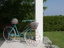 Blue, white and red bicycle with baskets and plants Royalty Free Stock Image