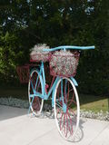 Blue, white and red bicycle with baskets and plants Royalty Free Stock Photography
