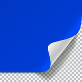 Blue and white sheet of paper with curved corner Royalty Free Stock Images