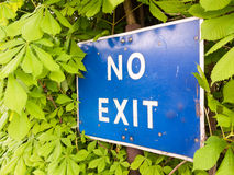 A blue and white sign saying no exit outside near a car park res. Triction in the bushes and trees law roads motorists cars Stock Image