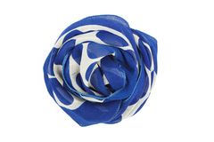 A blue and white silk scarf associated rose. Isolated on white background royalty free stock photos