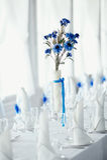 Blue on white table setting Royalty Free Stock Photos
