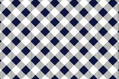Blue and white tablecloth pattern, Texture from rhombus/squares for - plaid, tablecloths, clothes, shirts, dresses, paper,. Blankets and other textile products stock illustration