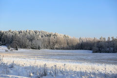 Blue and White Winters Day Royalty Free Stock Photo